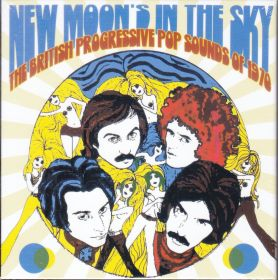 V.A. / NEW MOON'S IN THE SKY: THE BRITISH PROGRESSIVE POP SOUNDS OF 1970 の商品詳細へ