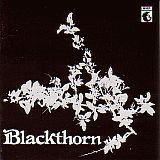 BLACKTHORN / BLACKTHORN の商品詳細へ