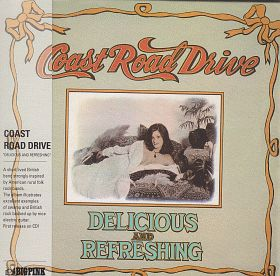 COAST ROAD DRIVE / DELICIOUS AND REFRESHING の商品詳細へ