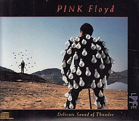 PINK FLOYD / DELICATE SOUND OF THUNDER の商品詳細へ