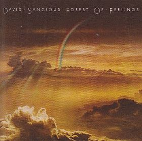 DAVID SANCIOUS (& TONE) / FOREST OF FEELINGS の商品詳細へ
