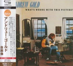 ANDREW GOLD / WHAT'S WRONG WITH THIS PICTURE ? の商品詳細へ