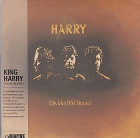 KING HARRY / DIVIDED WE STAND の商品詳細へ