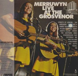 MERRUWYN / LIVE AT THE GROSVENOR HOUSE HOTEL SHEFFIELD の商品詳細へ