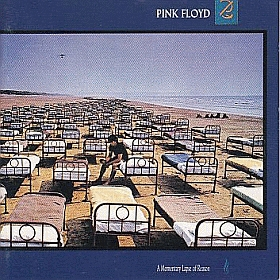 PINK FLOYD / A MOMENTARY LAPSE OF REASON の商品詳細へ