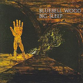 BIG SLEEP / BLUEBELL WOOD の商品詳細へ