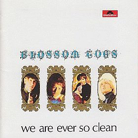 BLOSSOM TOES / WE ARE EVER SO CLEAN の商品詳細へ