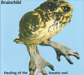 BRAINCHILD / HEALING OF THE LUNATIC OWL の商品詳細へ