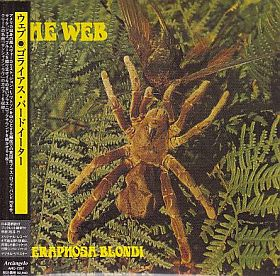 WEB / THERAPHOSA BLONDI の商品詳細へ