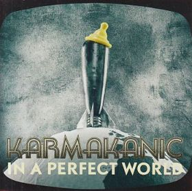 KARMAKANIC / IN A PERFECT WORLD の商品詳細へ