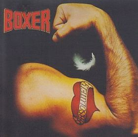BOXER / ABSOLUTELY の商品詳細へ