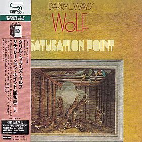 DARRYL WAY'S WOLF / SATURATION POINT の商品詳細へ