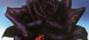 【カケレコ中古棚探検隊】栄光のブリティッシュ・ハード名盤中古在庫をレコメンド☆