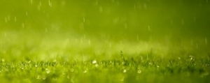 米音楽サイトULTIMATE CLASSIC ROCK発表の【雨をテーマにした曲TOP10】
