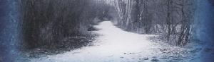 カケレコ店長の「日々是ロック」 - 雪予報の寒い一日だからこそ楽しみたい、世界のニッチな作品をピックアップ!